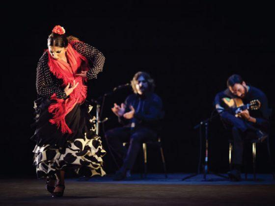 Foto: Ibérica
