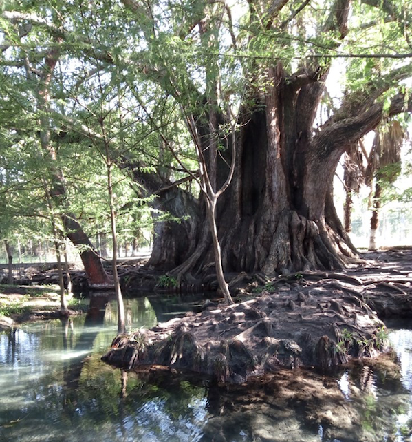 Foto: Secretaría de Turismo