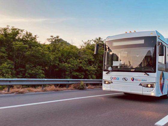 Qrobus nuevos autobuses